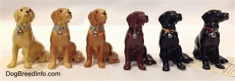 golden retriever color variations collectable vintage labrador retriever dogs