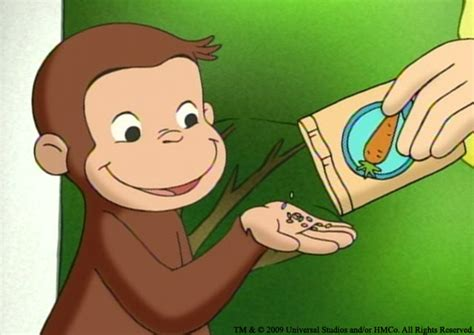curious george the agony and the ecstasy of pbs the weeklings