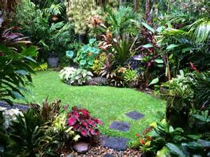 moon to moon small jungle style gardens