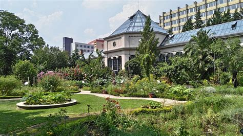 jardin in paris jardin des plantes paris all year