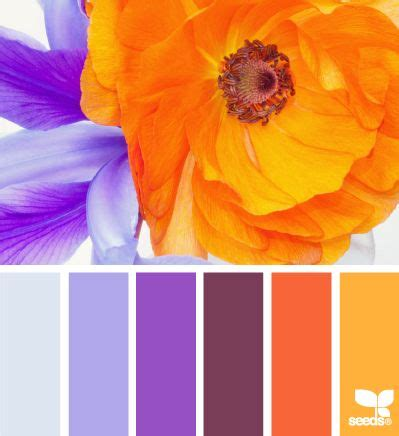 purple and orange color scheme 74 best caribbean house exterior ideas images on pinterest