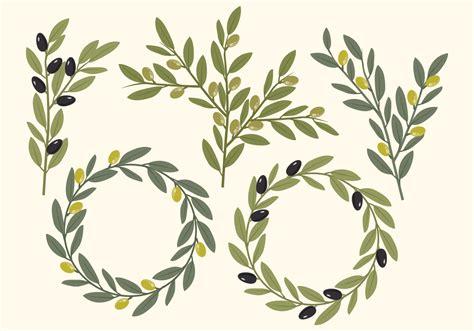 Vector Olive Elements Download Free Vector Art Stock