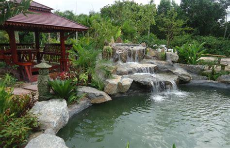 koi pond designs installations thai garden design