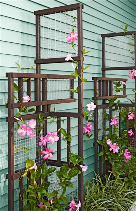 how to build a trellis for climbing plants 17 best ideas about garden trellis on trellis
