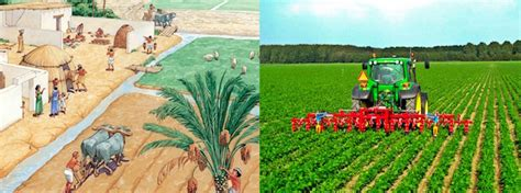 bittersweet brexit the future of food farming land and labour books the breakthrough institute the future of