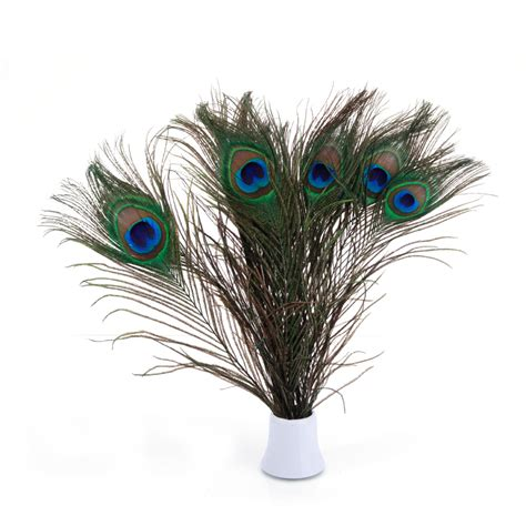 peacock feather home decor 100pcs natural beauty real peacock feather party wedding