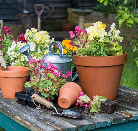 Flowers In Garden Images The Basics Of Self Watering Containers