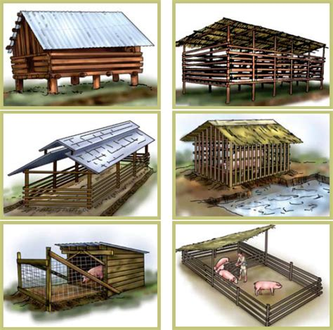 pig farm house design pig house plans in the philippines