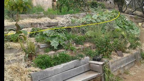 landscaping ideas for sloped backyard landscaping ideas for sloped backyard garden design on