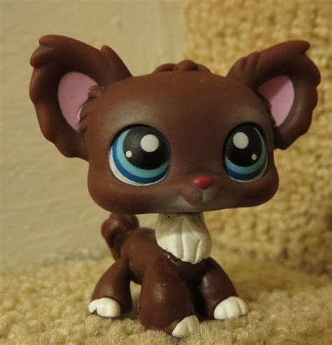 lps ebay dogs littlest pet shop lps brown chihuahua 219 ebay