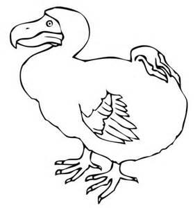 coloriage dodo oiseau disparu coloriages 224 imprimer gratuits