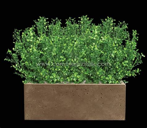 artificial boxwood plants silk boxwood faux boxwood