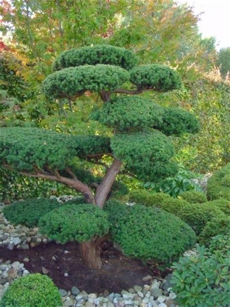 d 233 coration massif jardin zen clermont ferrand 2212