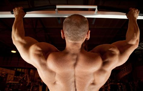 tip how to build mid back muscle t nation