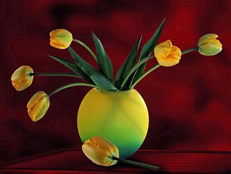 free illustration tulips vase flowers plant free