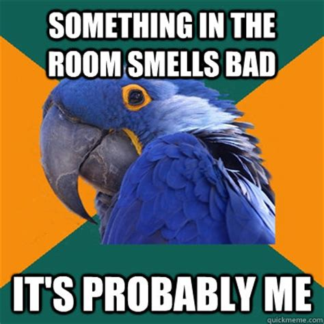 Room Smells Bad by Something In The Room Smells Bad It S Probably Me