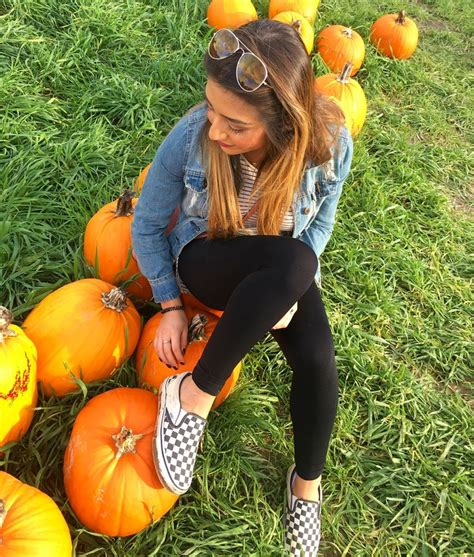 best 25 pumpkin patch ideas on fall