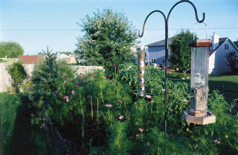 backyard conservation