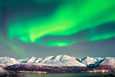 tromso northern lights special offer on northern lights in trosmo with best