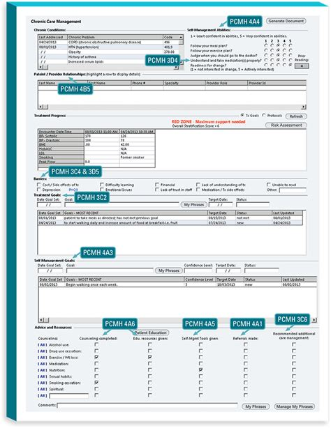 593 Forms 2017 Download Pdf Chronic Care Management Template 2017