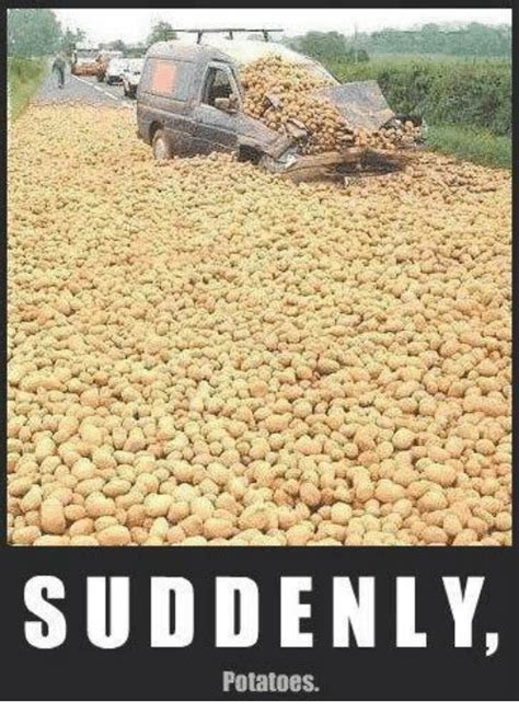 Suddenly Meme - 25 best memes about suddenly potatoes suddenly potatoes