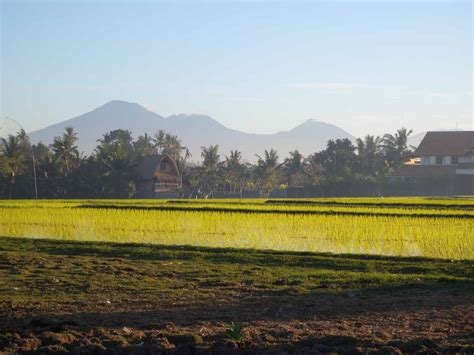 aquascape komang denpasar city bali padang padang lorraine huber