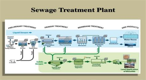 Sewage Treatment Plant sewage treatment plant will be completed by next year mayor