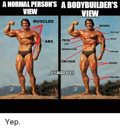 Female Bodybuilder Meme - anormal persons a bodybuilder s view view muscles biceps
