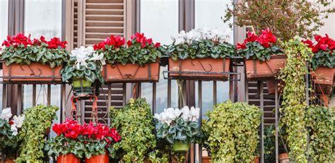 concorso balconi fioriti 1 176 concorso quot balconi fioriti caltanissetta 2017 quot sabato