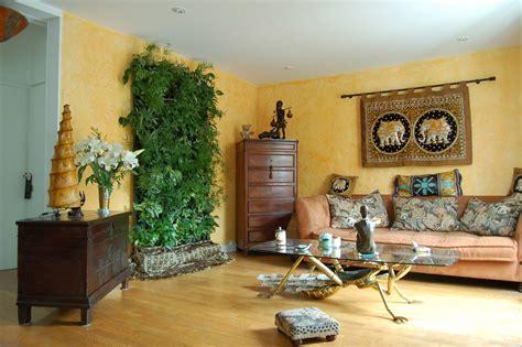 decoracion de plantas plantas de interior decoraci 243 n del hogar