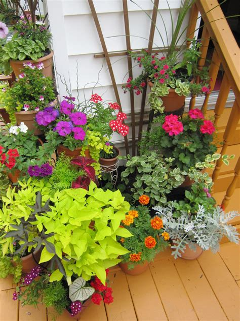 deck gardening containers plantscaping a deck or patio outdoor spaces patio