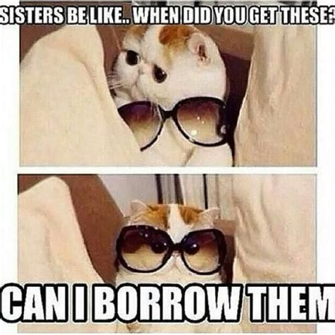 Funny Sister Memes - best 25 funny sister quotes ideas on pinterest