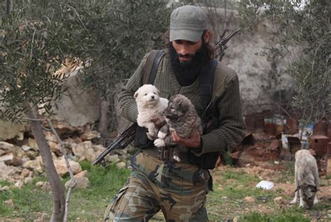 Syria Pet photos the free syrian army fighter who takes care of puppies