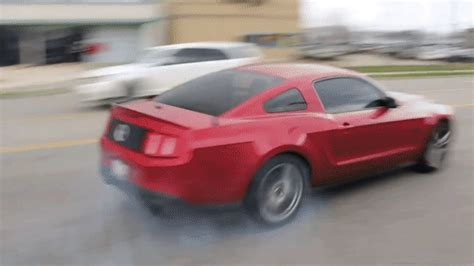 mustang gift mustang crashes peeling out of cars and coffee for the