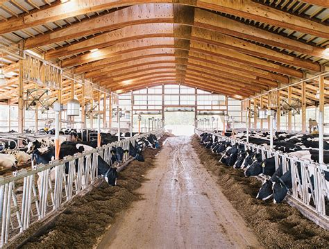 design milk shed the dairy barn redesigned modern farmer