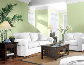 Paint Colors For Small Living Rooms Living Room Accent Wall Paint Ideas
