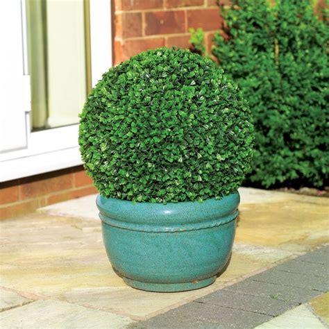 artificial buxus topiary ball cm artificial topiary