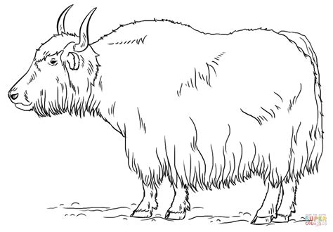 coloring page yak yak coloring page free printable coloring pages