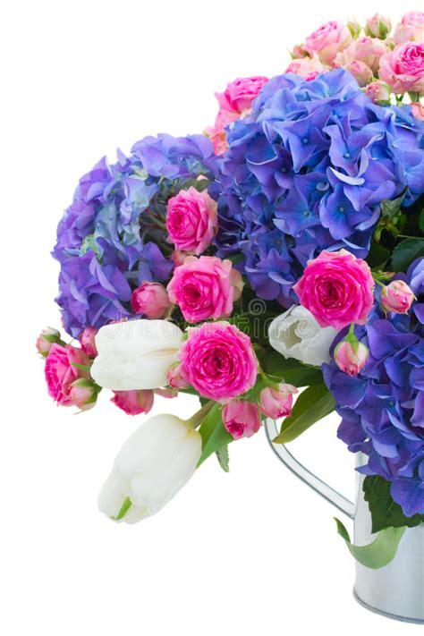 4 flores azules para jard las rosas rosadas y las flores azules hortensia se