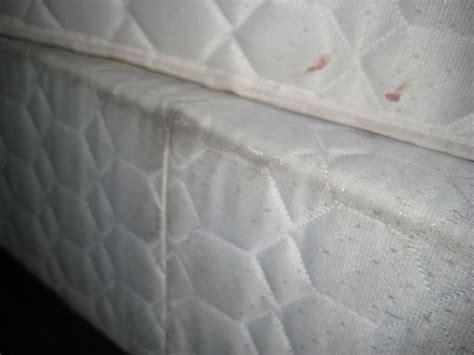 comment nettoyer un matelas solutions pour les t 226 ches