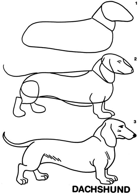 dachshund coloring page az coloring pages