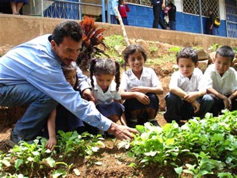 imagenes huertas escolares horticultura en la escuela unidad ii establecimiento y
