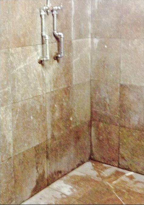 Shower Issues by Slippery Rock Gazette Restoration And Maintenance