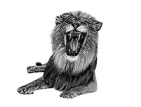 Lion Dessin Main Tete De Lion Dessinee Illustration L
