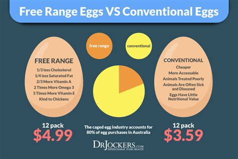 the health benefits of organic eggs 10 key health benefits of eggs in your diet