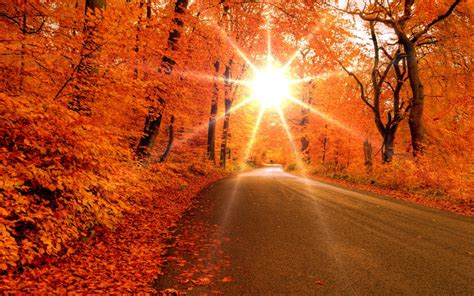 fall wallpaper for macbook 1280x800 autumn road desktop pc and mac wallpaper