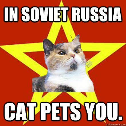 Russian Cat Meme - online gallery maker xcombear download photos textures