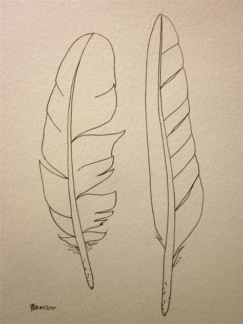 how to draw sea birds original ink feather drawing 2 sea bird feathers