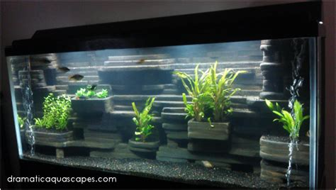 dramatic aquascapes dramatic aquascapes diy aquarium background aaron