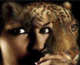 Shapeshifting by Shape Shifter Leopard Shapeshifters Shape Shifters